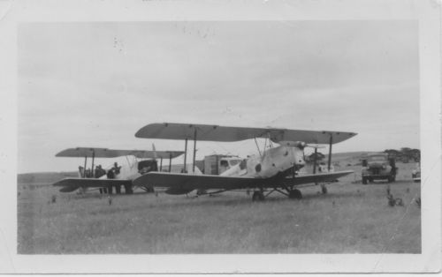Tiger moth aircraft used for aerial spraying of locust plagues north of Jamestown in the 1950s and 1960s.