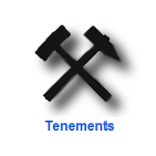 Tenement Support